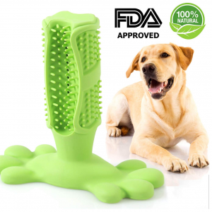 Inspiring Band Dog Chew Toothbrush - InspiringBand