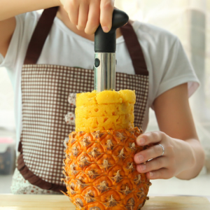 Best pineapple corer - InspiringBand