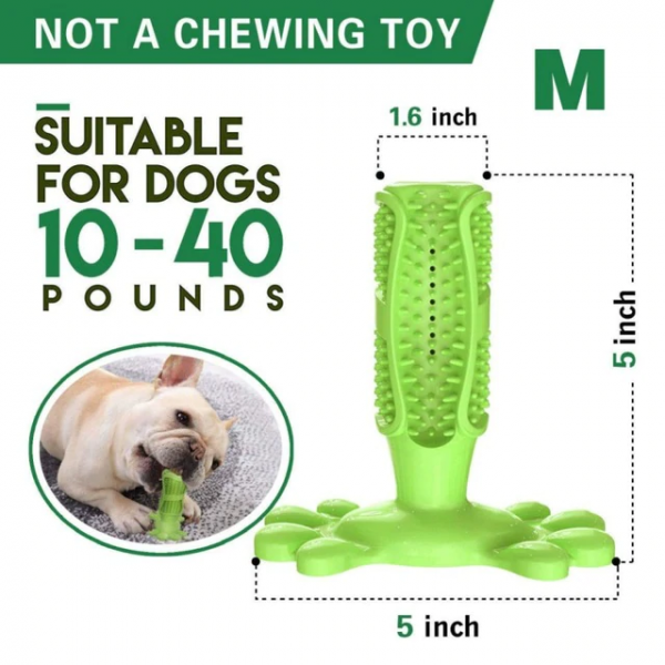 Inspiring Band Dog Chew Toothbrush - InspiringBand